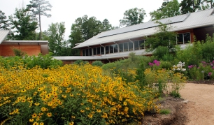 gorgeous-nc-botanical-gardens-north-carolina-botanical-garden-chapel-hill-nc